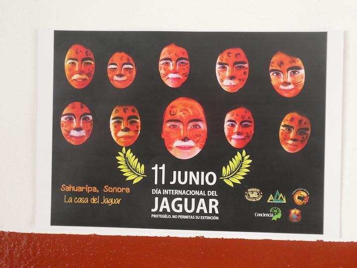 Dia del Jaguar