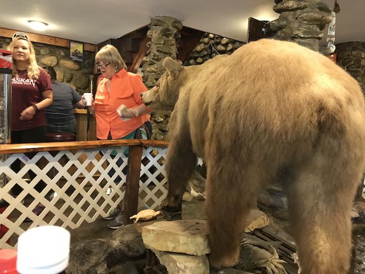 Anchorage Gwinnies bear rear