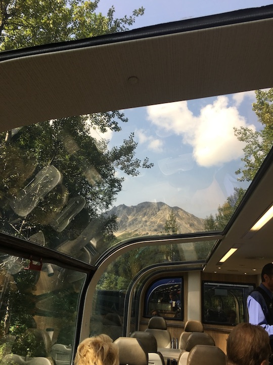 Train Dome Car 1