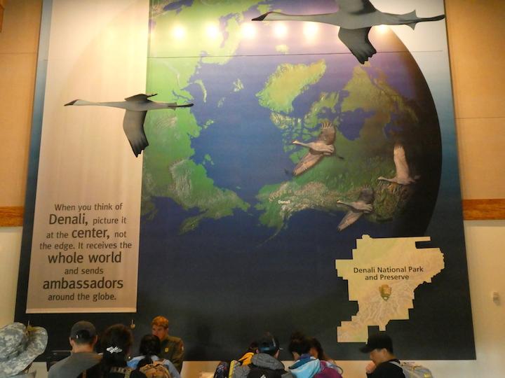 Denali Visitor Center 1