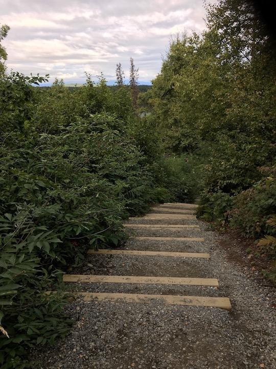 Talkeetna Trail 2