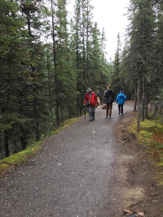 Talkeetna Trail 1