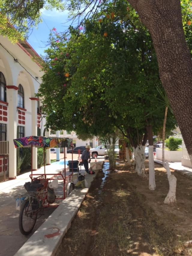 Sahuaripa street scene