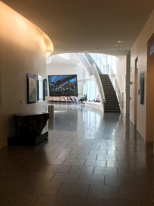 Fairbanks Museum hall