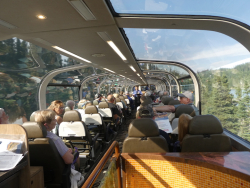 Train Dome Car 2