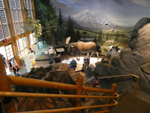 Denali Visitor Center 3