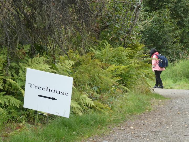 Talkeetna Lodge Treehouse 5