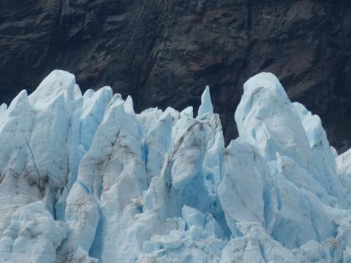 Westerdam.GlacierBay7