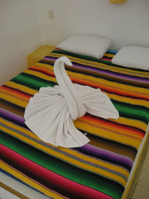 10 - Simple hotel; fancy towel treatment