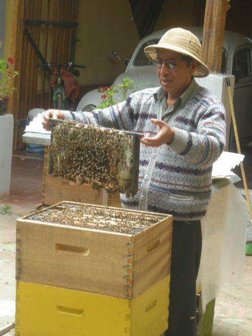 19 A very calm beekeeper
